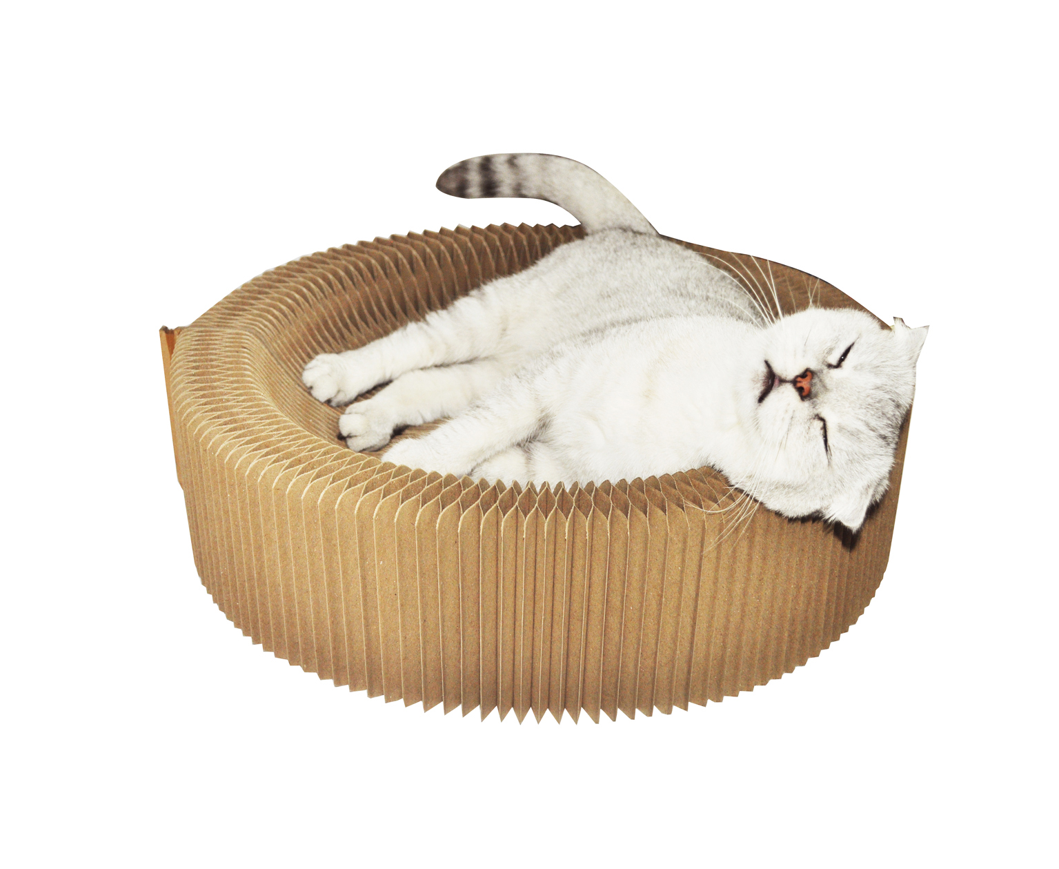 title='Cardboard Cat Scratcher Foldable Cat Bed'
